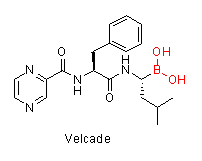 Velcade Chemical Structure Drawing